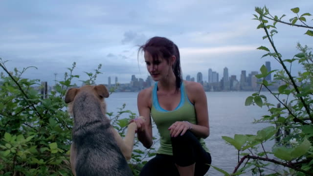 young woman working out/petting dog in front of seattle skyline. - pacific northwest usa stock videos & royalty-free footage