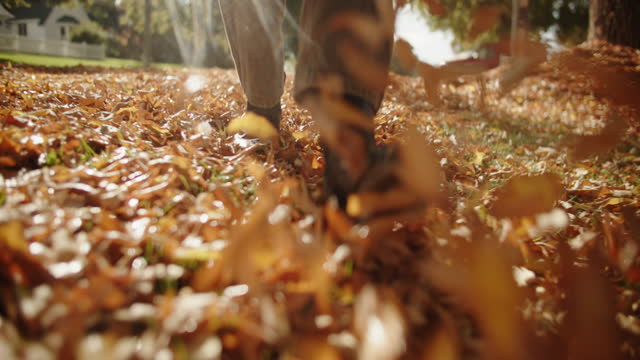 sm cu young woman's feet walking in the fall leaves - leaf stock videos & royalty-free footage