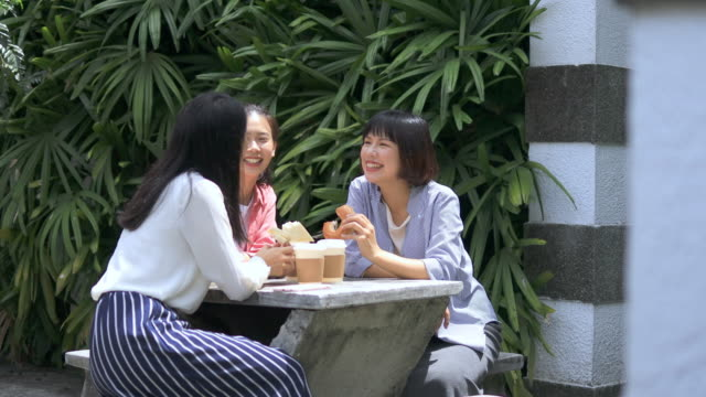 young women chatting at schoolyard for lunch - weekend activities stock videos & royalty-free footage