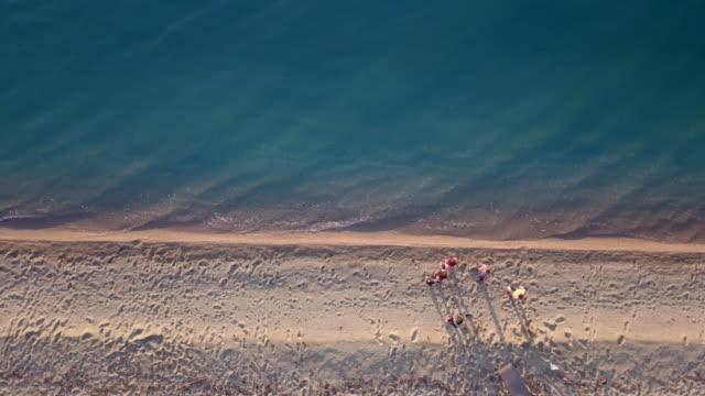 vídeos de stock e filmes b-roll de young women gathering on a sandy beach for jogging - water's edge