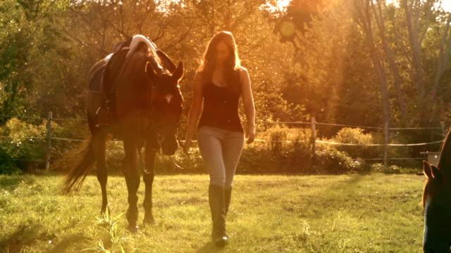 Jonge vrouwen paard zonlicht boerderij Paddock Slowmotion