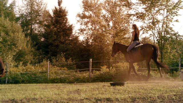 young women horse sunlight farm paddock slow motion - horseback riding stock videos & royalty-free footage