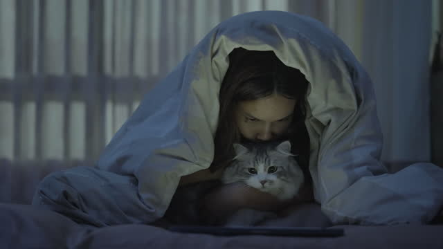 young women kissing cat and using tablet on bed - pet owner stock videos & royalty-free footage
