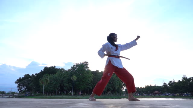 vídeos de stock, filmes e b-roll de jovens mulheres praticando artes marciais ao ar livre no parque - posição de combate