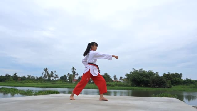 young women practising martial arts outdoors, slow motion - martial arts stock videos & royalty-free footage