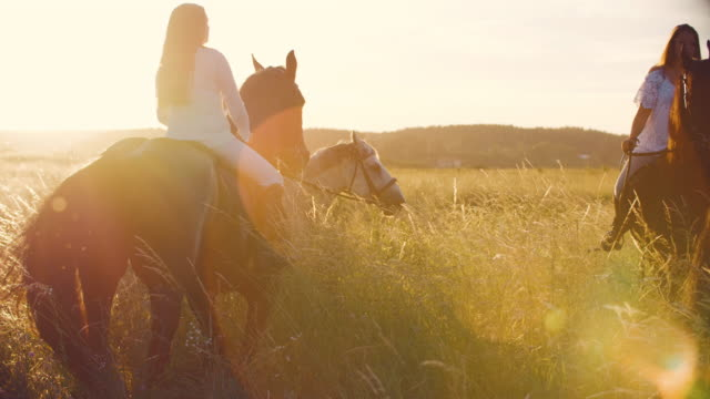 young women riding horses on grassy field - recreational horse riding stock videos & royalty-free footage