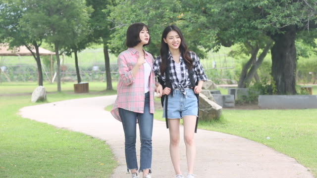 vídeos de stock, filmes e b-roll de young women tourists walking in the park - de braços dados