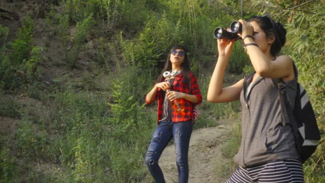 young women using binoculars while hiking in mountain woods. - binoculars stock videos & royalty-free footage
