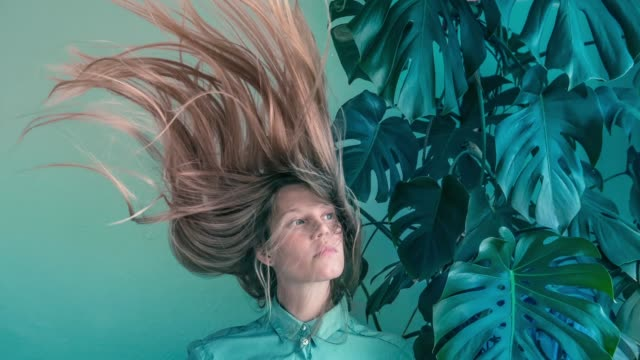 vídeos de stock e filmes b-roll de young women with flying hair and monstera - hair