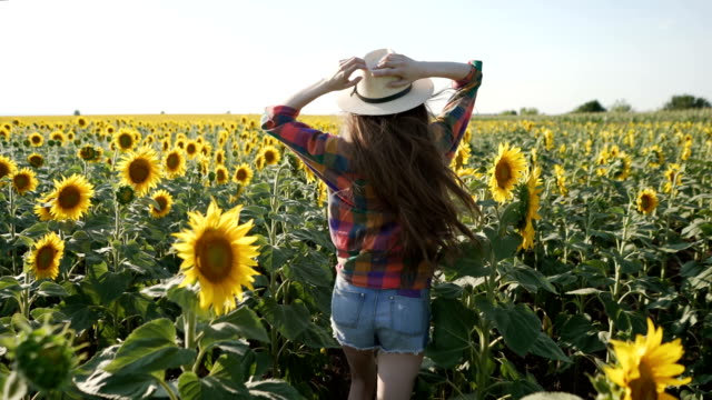 stockvideo's en b-roll-footage met jeugdige schoonheid - zonnebloem