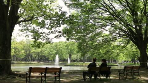 yoyogi park - natural parkland stock videos & royalty-free footage