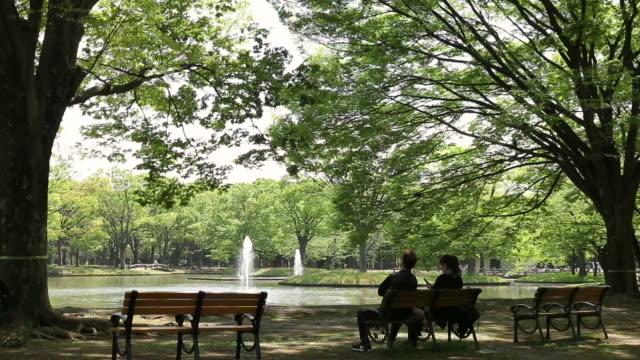 yoyogi park - ベンチ点の映像素材/bロール