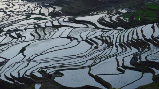 Yuanyang rice-paddy terracing, Yuanyang County, Honghe Han and Hi Autonomous Prefecture, Yunnan Province, China, Asia, UNESCO World Heritage Site