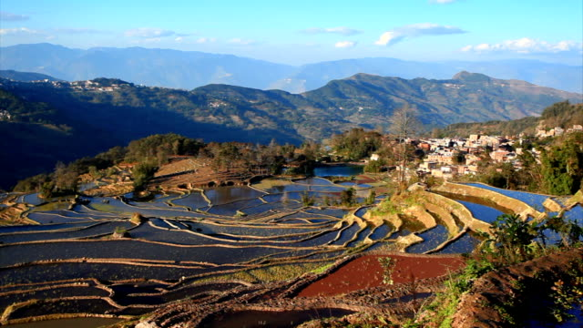 yuanyang  terraced fields - yunnan province stock videos and b-roll footage