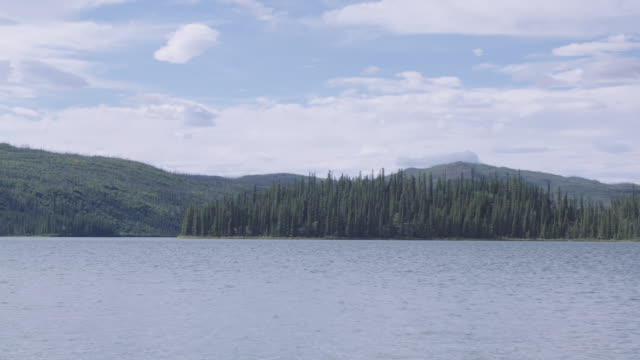 Yukon River with forest