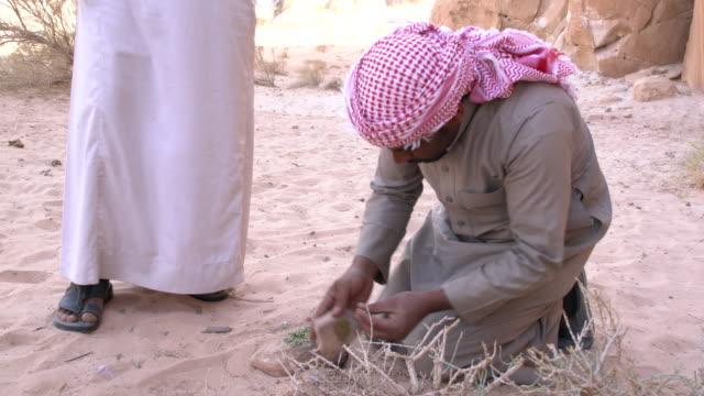 Zalabia Bedouin showing how to use plant called ajram to wash his hands in Wadi Rum Desert, Jordan