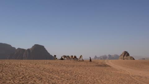 zalabia bedouins with their camels in wadi rum desert, jordan - sandstone stock videos & royalty-free footage