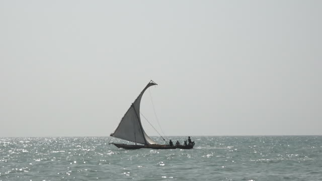 zanzibar indian ocean beach with ancient dhow ships passing by - ダウ船点の映像素材/bロール