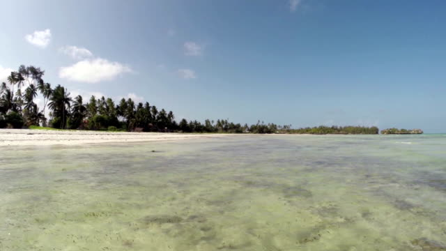 Zanzibar - Panoramic view at surface of the sea