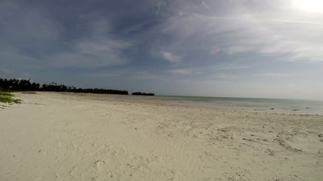 zanzibar - panoramic view of a beach - pjphoto69 stock videos & royalty-free footage