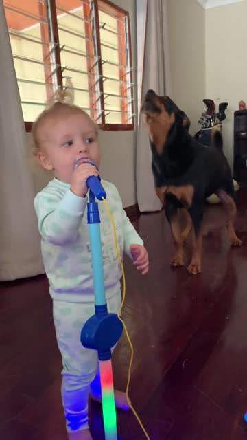 zara and gia love to sing together! when gia's parents bought her a microphone, zara the dog decided to join in the fun! and thus their little band... - pop music stock videos & royalty-free footage