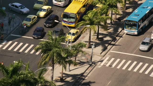 t/l, ms, ha, zebra crossing on avenida presidente antonio carlos, rio de jaineiro, brazil - fan palm tree stock videos & royalty-free footage