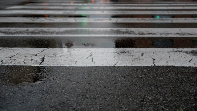 farfalla incroci con semaforo e trasporto pubblico a pioggia - segnale per macchine e pedoni video stock e b–roll