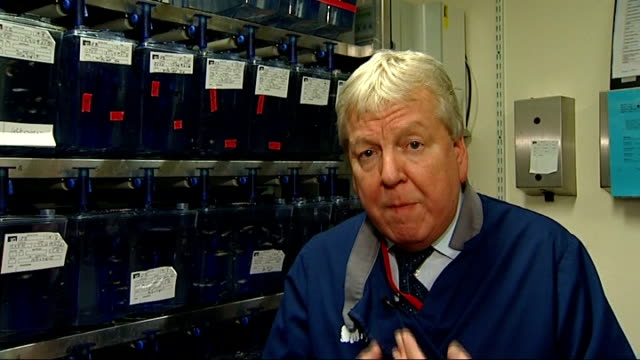 Zebrafish research to be used to help cardiac patients Reporter to camera Zebrafish in fish tank