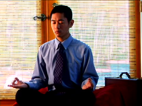 zen executive - lotusställning bildbanksvideor och videomaterial från bakom kulisserna