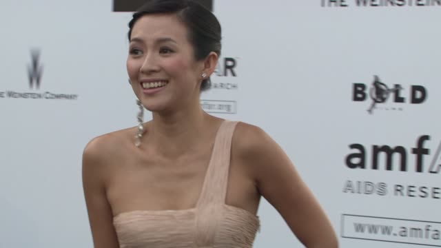 Zhang Ziyi at the Cannes Film Festival 2009 amfAR Red Carpet at Antibes