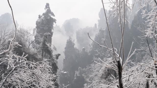 冬の張り家界国家森林公園 - 生い茂る点の映像素材/bロール