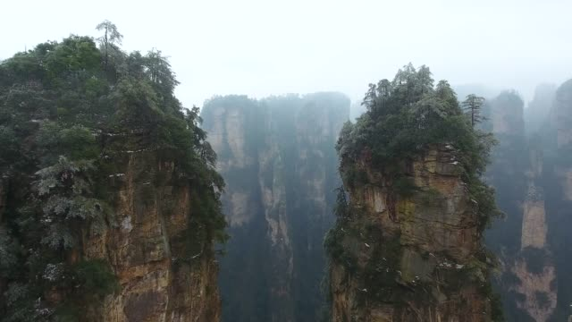 zhangjiajie national park - evergreen stock videos & royalty-free footage