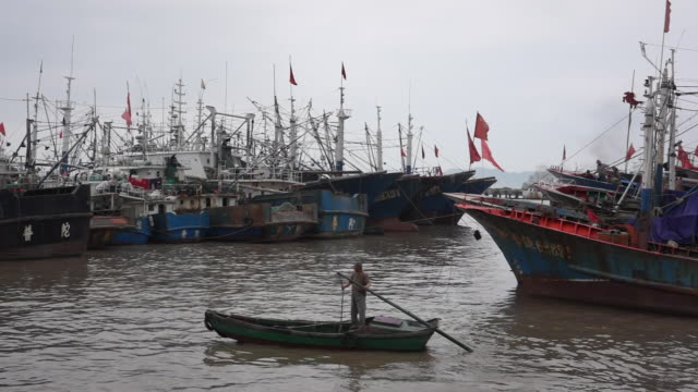 vídeos y material grabado en eventos de stock de zhoushan shenjiamen fishing port located in the east of zhejiang province is the largest natural fishing port in china and one of the world's three... - anclado