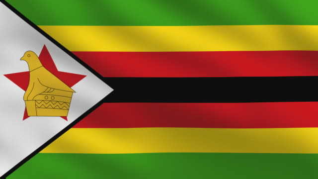 zimbabwe flag - harare stock videos and b-roll footage