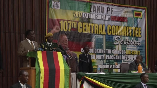 zimbabwe's new president emmerson mnangagwa says the country must think sleep dream and walk productivity as he addresses his zanu pf party's central... - zimbabwe stock videos & royalty-free footage