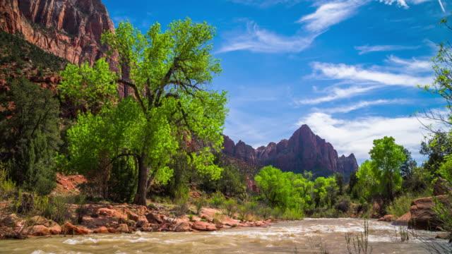 ユタ州、アメリカ合衆国 - 4 k 自然/野生動物/天気でザイオン国立公園 - ザイオン国立公園点の映像素材/bロール