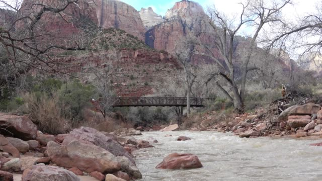 zion national park, utah - sedimentary rock stock videos & royalty-free footage