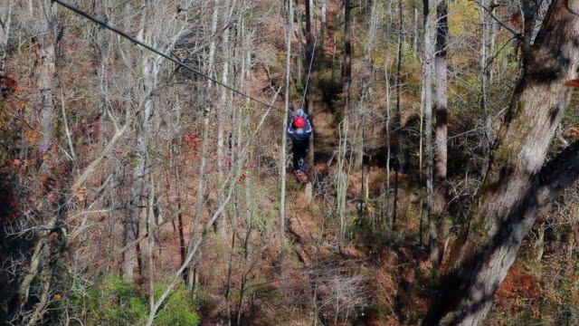 ziplining through the forest - pulley stock videos & royalty-free footage
