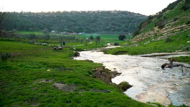vidéos et rushes de zippori- a river in the lower galilee, flowing between green hills - vallée