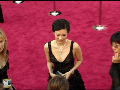Ziyi Zhang at the 2005 Annual Academy Awards Arrivals at the Kodak Theatre in Hollywood California on February 28 2005