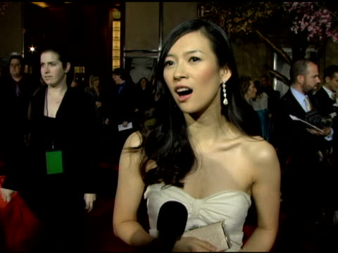 ziyi zhang on her character and her experiences while making the movie at the 'memoirs of a geisha' premiere at the kodak theatre in hollywood... - ドルビー・シアター点の映像素材/bロール