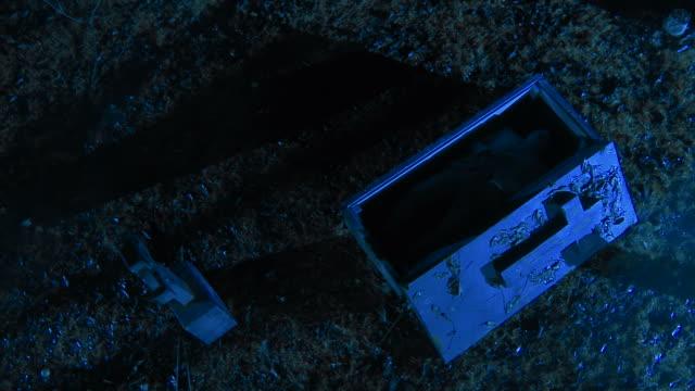 HD CRANE: Zombie sich aus der Coffin