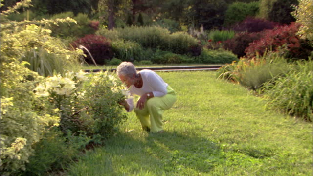 Zoom in as a woman crouches to look at flowers in a botanical garden, then walks out of a scene.