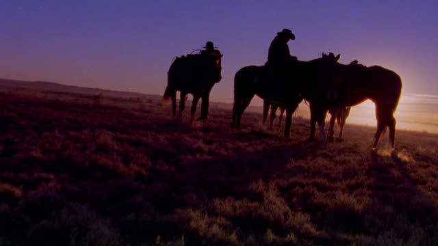 canted zoom in cowboy mounting horse with second cowboy holding two horses / new mexico - cowboy stock videos & royalty-free footage