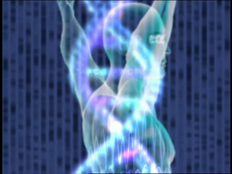 zoom in extreme close up hand to fingerprints / grid man with dna helix / computer generated image face with pill / hand with fingerprint - animazione biomedica video stock e b–roll