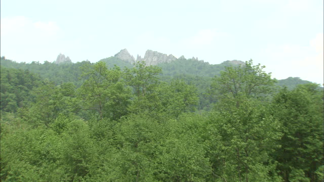 Zoom in over forest to rocky peaks of Mount Kirigishi, Ashibetsu, Hokkaido