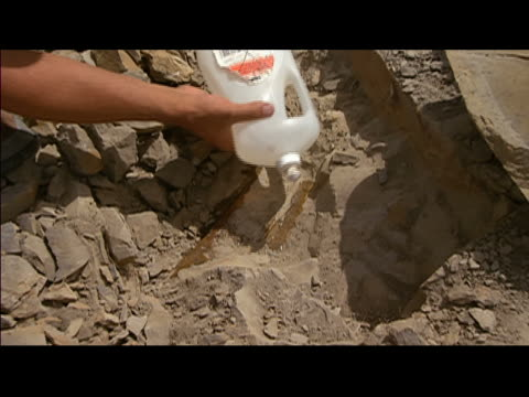 vidéos et rushes de zoom in over man squirting liquid onto fossil at excavation site at hell creek formation / montana - archéologie