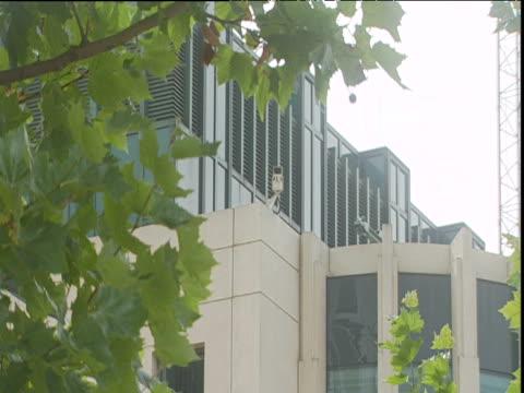 zoom in past green foliage to cctv camera on corner of mi6 building vauxhall - mi6 stock-videos und b-roll-filmmaterial