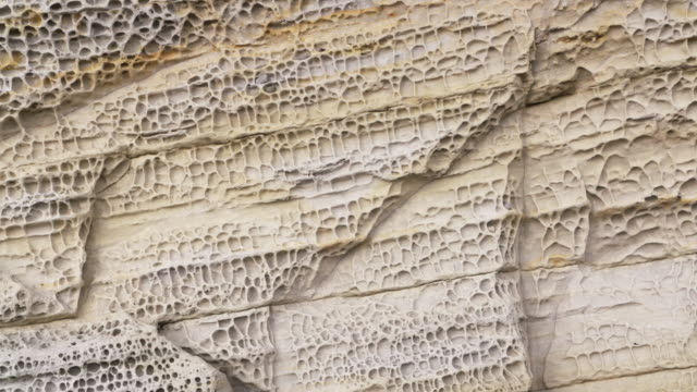 vídeos y material grabado en eventos de stock de zoom in. patterns of honeycomb weathering, typical on calcareous  sandstones at the coast. - arenisca