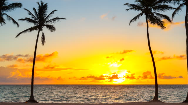 zoom in, time lapse of sunrise over tropical beach and palm trees - caribbean sea stock videos and b-roll footage